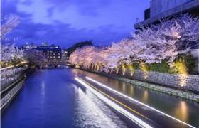 少儿日语培训教材哪家好?儿童学日语,什么样的教材好?