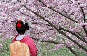 4岁小孩学日语,爸妈的经验分享!