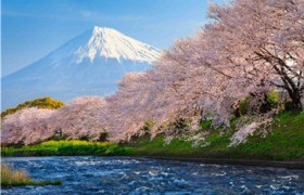 如何为孩子选择合适的在线少儿日语学习