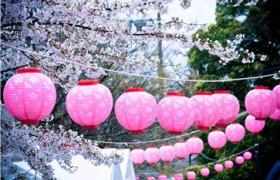 少儿在线日语哪个好?在线日语哪个适合孩子学习?