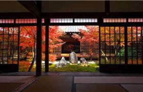 网上学日语费用多少_每天步行下学日语_网上学口语日语